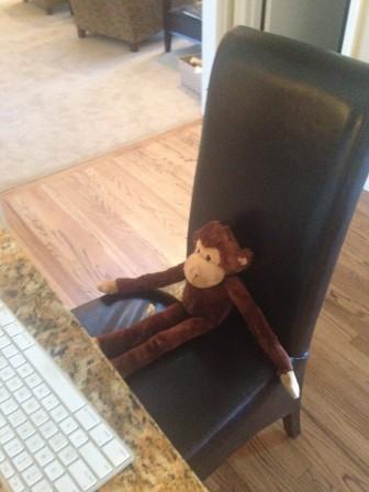 monkeychair